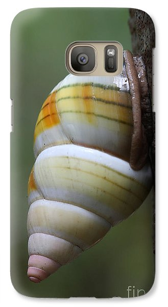 Galaxy Case featuring the photograph Florida Tree Snail by Paul Rebmann