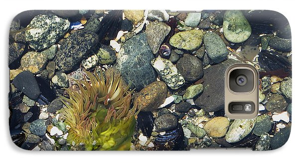 Galaxy Case featuring the photograph Flourishes Of The Sea by Gayle Swigart