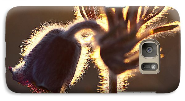 Galaxy Case featuring the photograph Flower In Back Light by Kennerth and Birgitta Kullman