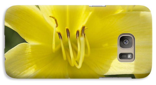 Galaxy Case featuring the photograph Flower  by Trace Kittrell