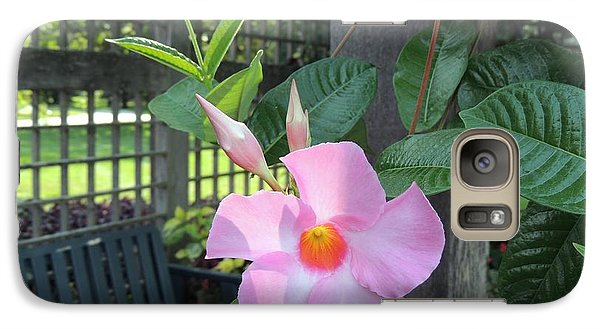 Galaxy Case featuring the photograph Flowering Vine by Teresa Schomig
