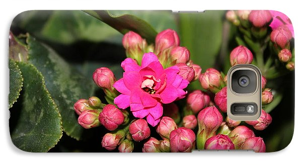 Galaxy Case featuring the photograph Flowers by Cyril Maza