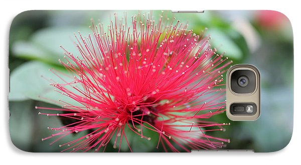 Galaxy Case featuring the photograph Fluffy Pink Flower by Sergey Lukashin