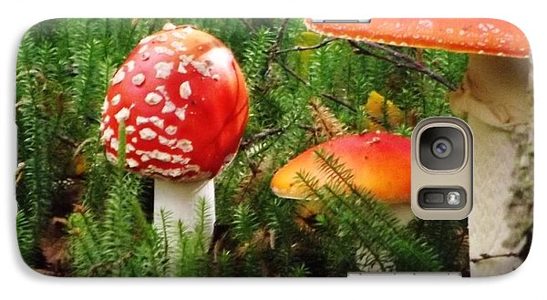 Galaxy Case featuring the photograph Fly Agaric Mushroom by Brigitte Emme
