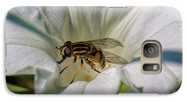 Galaxy Case featuring the photograph Fly In White Flower by Leif Sohlman
