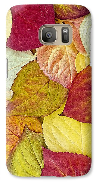 Galaxy Case featuring the photograph Foliage Quilt by Alan L Graham