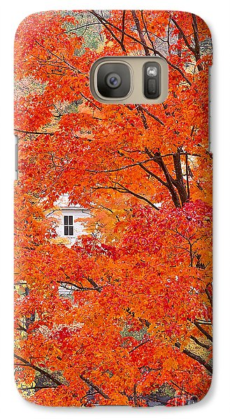 Galaxy Case featuring the photograph Foliage Window by Alan L Graham