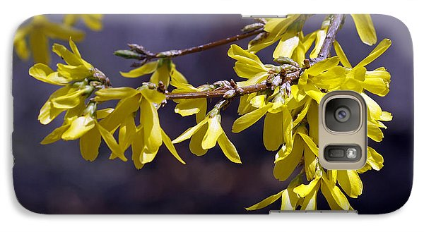 Galaxy Case featuring the photograph Forsythia by Denise Pohl