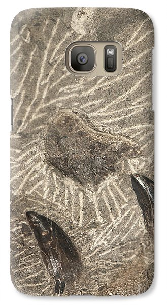 Galaxy Case featuring the photograph Fossil Shark Teeth by Artist and Photographer Laura Wrede
