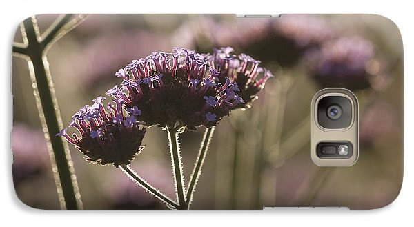 Galaxy Case featuring the photograph Found In The Fall Garden by Inge Riis McDonald