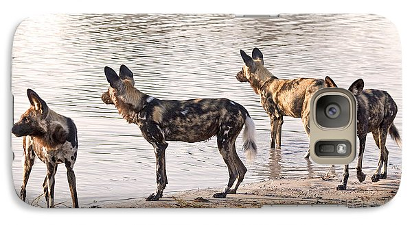 Galaxy Case featuring the photograph Four Alert African Wild Dogs by Liz Leyden