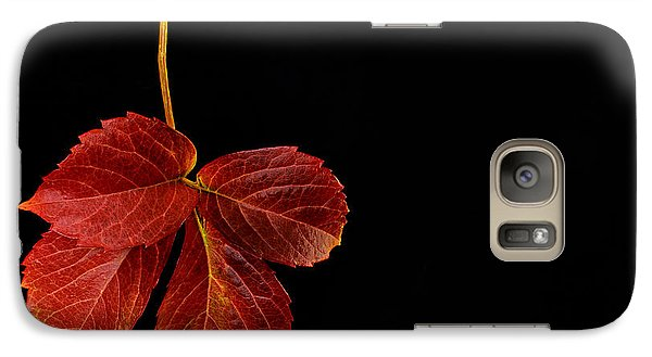 Galaxy Case featuring the photograph Four Leaves by Marwan Khoury