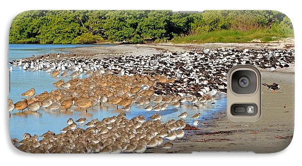 Galaxy Case featuring the photograph Four Species Of Birds At Roost On Tampa Bay Beach by Jeff at JSJ Photography