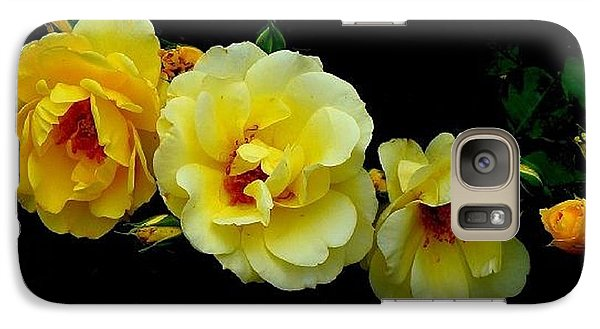 Galaxy Case featuring the photograph Four Stages Of Bloom Of A Yellow Rose by Janette Boyd