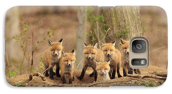 Phoenix Galaxy S7 Case - Fox Family Portrait by Everet Regal