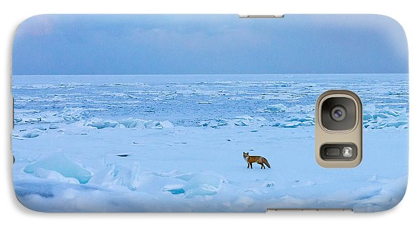 Galaxy Case featuring the photograph Fox Of The North Country Iv by Mary Amerman