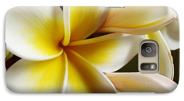 Galaxy Case featuring the photograph Frangipani 1 by Trena Mara