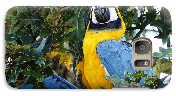 Galaxy Case featuring the digital art Free Flying Macaws by Melissa Messick