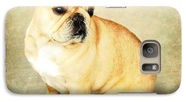 Galaxy Case featuring the photograph French Bulldog Antique by Barbara Chichester