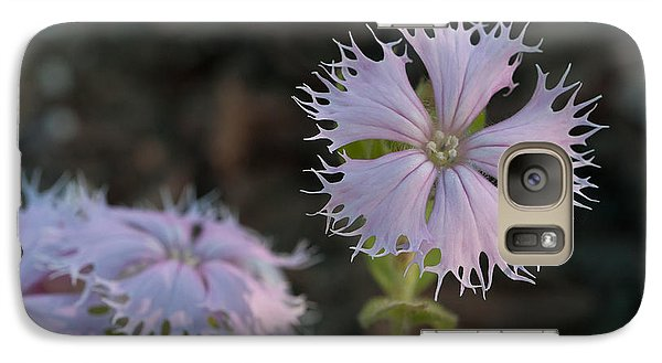 Galaxy Case featuring the photograph Fringed Catchfly by Paul Rebmann