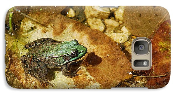 Galaxy Case featuring the photograph Frog And A Ladybug by Janice Adomeit