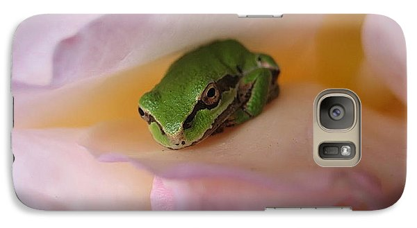 Galaxy Case featuring the photograph Frog And Rose Photo 2 by Cheryl Hoyle