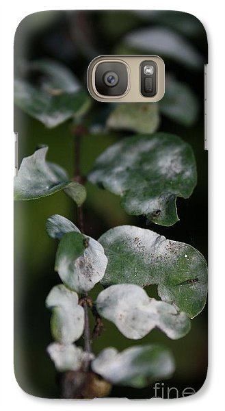 Galaxy Case featuring the photograph Frost Coloured Leaves by Amanda Holmes Tzafrir