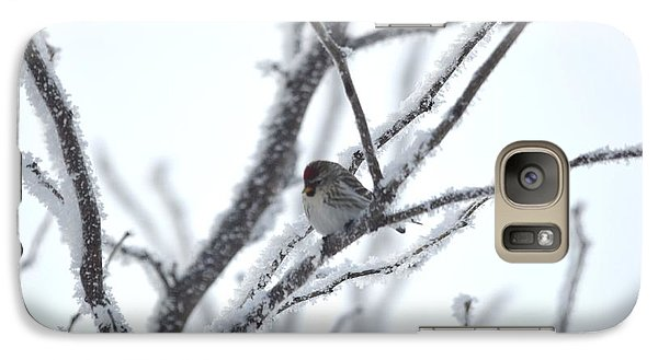 Galaxy Case featuring the photograph Frosted Branches by Dacia Doroff