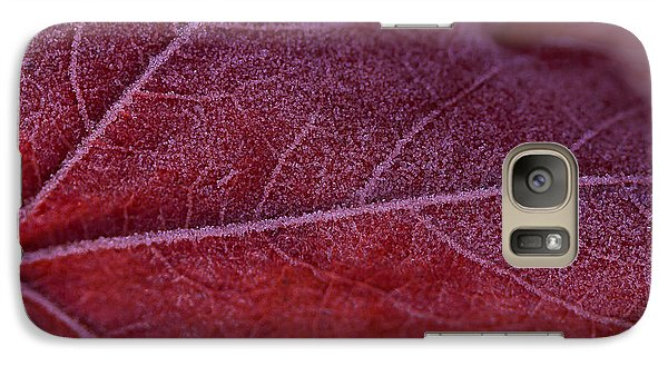 Galaxy Case featuring the photograph Frosty Leaf by Haren Images- Kriss Haren