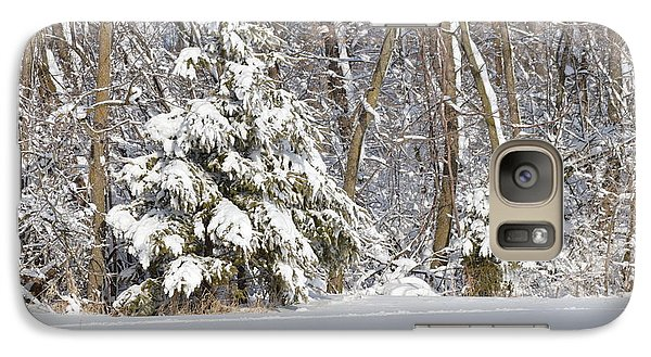 Galaxy Case featuring the photograph Frosty Pine by Dacia Doroff