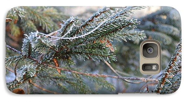 Galaxy Case featuring the photograph Frozen Fir Branch  by Felicia Tica