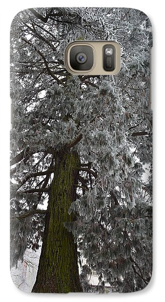 Galaxy Case featuring the photograph Frozen Tree 2 by Felicia Tica