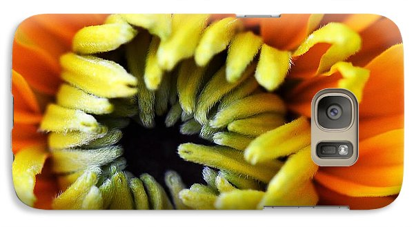 Galaxy Case featuring the photograph Fuzzy Wuzzy by Judy Wolinsky