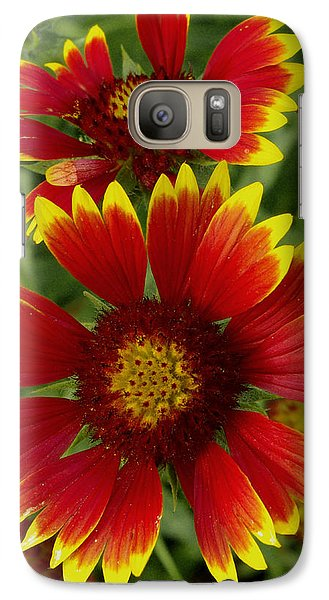 Galaxy Case featuring the photograph Gaillardia / Flowers by James C Thomas