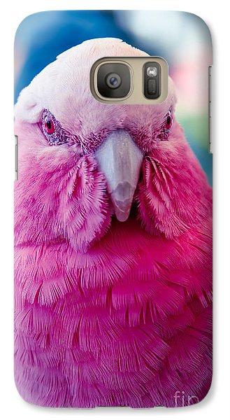 Galah - Eolophus Roseicapilla - Pink And Grey - Roseate Cockatoo Maui Hawaii Galaxy S7 Case by Sharon Mau