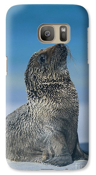 Galaxy Case featuring the photograph Galapagos Sea Lion by Chris Scroggins