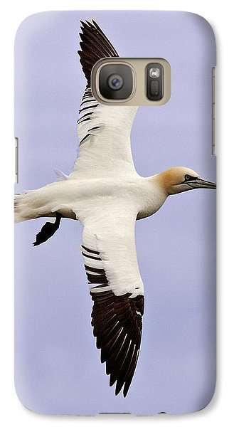 Galaxy Case featuring the photograph Gannet . by Paul Scoullar