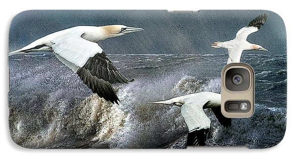 Galaxy Case featuring the photograph Gannets Skimming The Waves by Brian Tarr