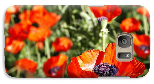 Galaxy Case featuring the photograph Garden Of Poppies by Lincoln Rogers