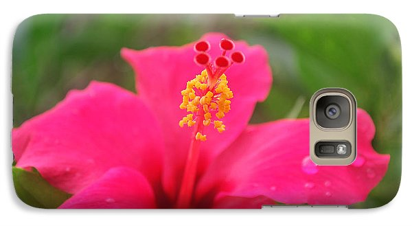 Galaxy Case featuring the photograph Garden Rains by Miguel Winterpacht