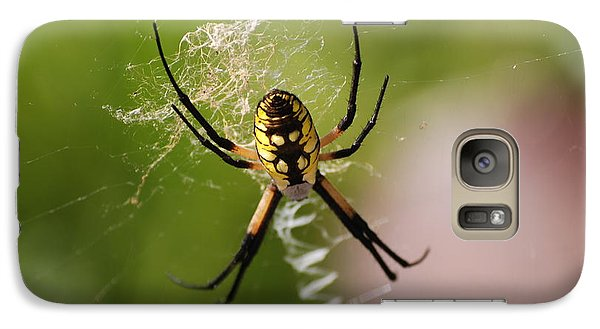 Galaxy Case featuring the photograph Garden Spider by Mark McReynolds