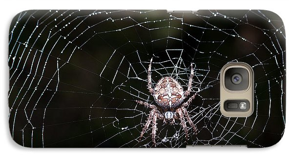 Galaxy Case featuring the photograph Garden Spider by Matt Malloy