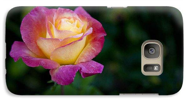 Galaxy Case featuring the photograph Garden Tea Rose by David Millenheft
