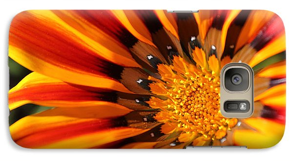 Galaxy Case featuring the photograph Gazania Glory by Richard Stephen