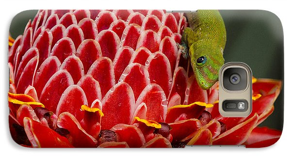 Galaxy Case featuring the photograph Gecko On Red Ginger by Inge Riis McDonald
