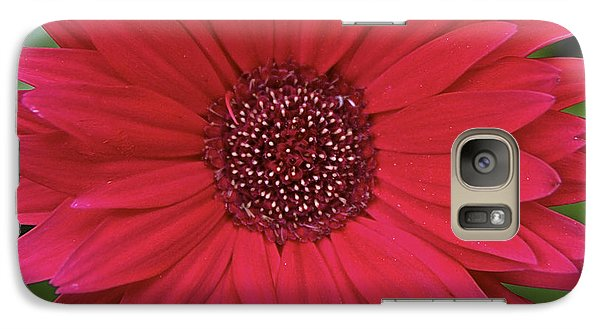 Galaxy Case featuring the photograph Gerber Daisy In Red by Susan Crossman Buscho