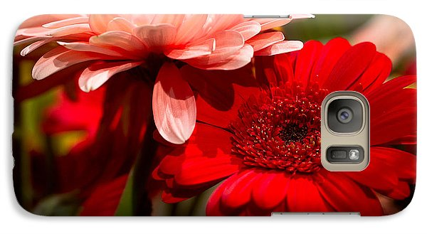 Galaxy Case featuring the photograph Gerbera Daisies by Patrice Zinck