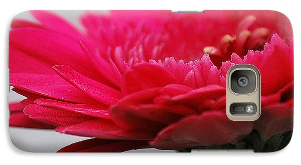 Galaxy Case featuring the photograph Gerber In Pink by Amee Cave