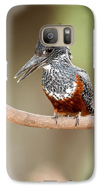Giant Kingfisher Megaceryle Maxima Galaxy S7 Case by Panoramic Images