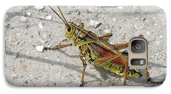 Galaxy Case featuring the photograph Giant Orange Grasshopper by Ron Davidson